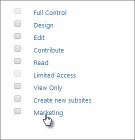 マーケティングという名前のアクセス許可レベルを選ぶ