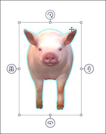 移動矢印が表示されている、選択された豚モデル。