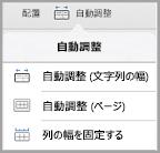 iPad の自動調整オプション