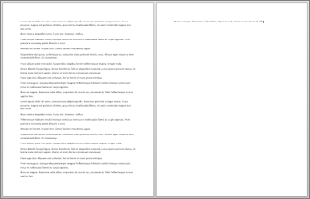 2 ページ目に 1 文のみがある 2 ページの文書