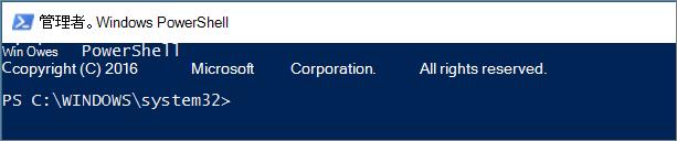 最初に PowerShell を開いたときの外観。
