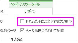 [デザイン] タブに文書オプションを持つスケール