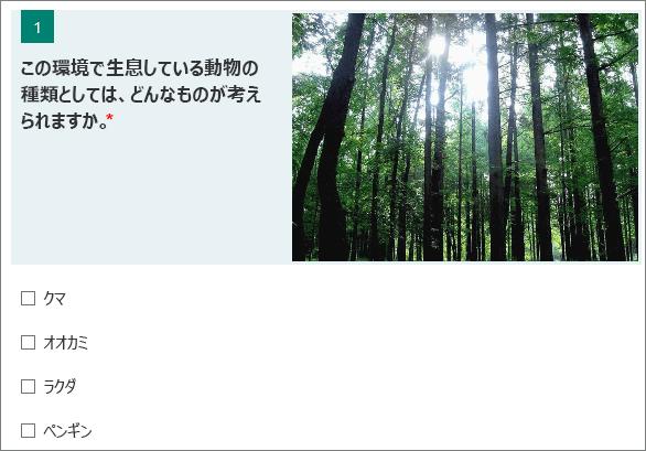 質問の横に表示される森のイメージ