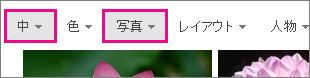 中サイズの写真にフィルター処理した Bing 画像検索結果