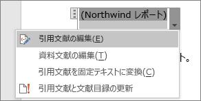 引用文献の下に使用可能なオプションが表示される