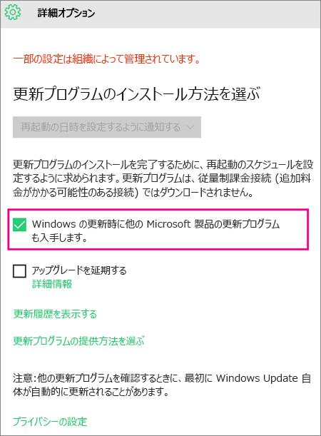 Windows Update の [詳細オプション]