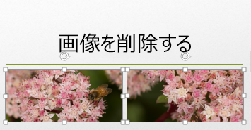 Control キーを押しながら、複数の画像を選ぶことができます。