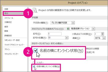 プロジェクトのオプション、[画面] タブ