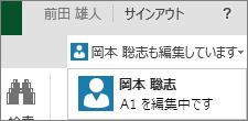 Excel Online の複数の作成者