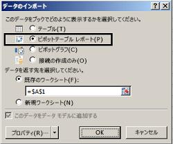 インポート オプション ダイアログ ボックス