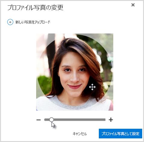 円の内部をクリックしてからドラッグして位置を変更するか、写真の下のスライダーを使用して拡大/縮小します。