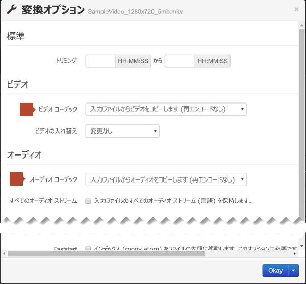 ビデオ コードとオーディオ コーデックのオプションがある [Conversion Options] ダイアログ ボックス