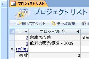 プロジェクト データベース テンプレート