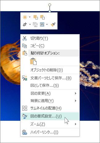 Publisher の [図の書式設定] オプションのスクリーンショット。