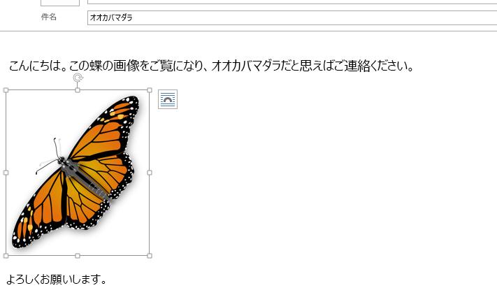 画像は現在メッセージに挿入されています。