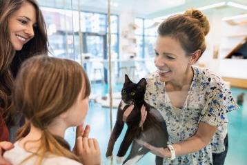 猫を抱く獣医師
