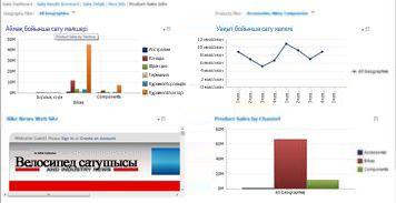 Қолданылатын 2 сүзгісі бар PerformancePoint бақылау тақтасы
