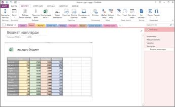 OneNote бағдарламасының бетіндегі Excel электрондық кестесін шолу
