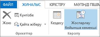 Outlook 2013 бағдарламасындағы жоспарлау көмекшісі түймешігі.