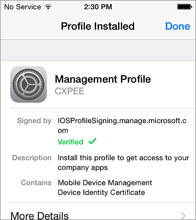 Complete profile installation on iPhone