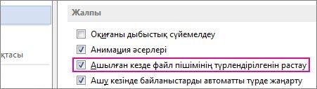Ашық параметрде файл пішімінің түрлендірілгенін растау