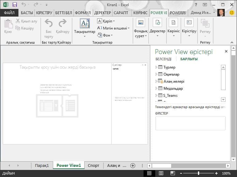 Excel бағдарламасындағы бос Power View есебі