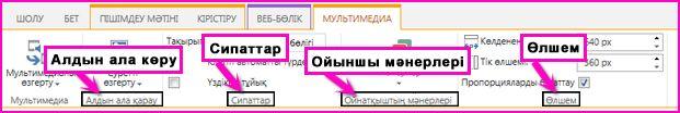 Медиа веб бөлігінде таспа скриншоты. Алдын ала қарау, Сипаттар, Ойнатқыш мәнері және Өлшем сияқты опцияларды көрсетеді.