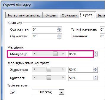 Publisher бағдарламасындағы «Суретті пішімдеу» диалогтық терезесінің скриншоты.