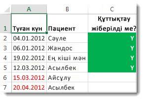 Excel бағдарламасындағы шартты пішімдеу үлгісі