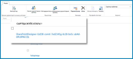 SPO қызметінің BCS бағдарламасына арналған Сыртқы жүйе көрінісі кезінде таспаның AQ скриншоты.