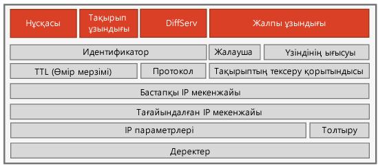 IPv4 тақырыбы