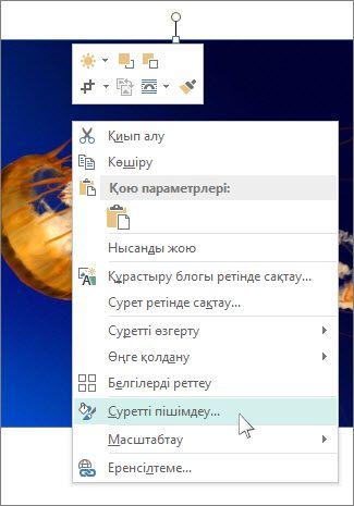 Publisher бағдарламасындағы «Суретті пішімдеу» параметрлерінің скриншоты.