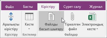 OneNote 2016 бағдарламасындағы «Файлдың басып шығарылатын беті» түймешігінің скриншоты.
