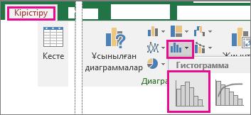 «Кірістіру» қойыншасын, Статистикалық диаграммалар > Гистограмма тармағын көрсететін сурет