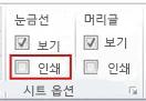 페이지 레이아웃 탭의 시트 옵션 그룹
