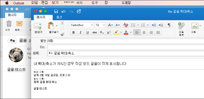 Outlook for Mac 글꼴 크기