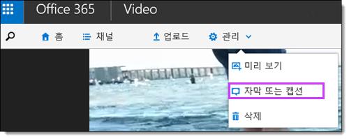 Office 365 영상 자막