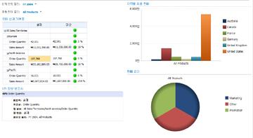 회계 연도 필터 및 제품 판매 필터가 적용된 판매 대시보드