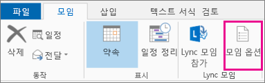 Outlook 2013의 모임 옵션 단추