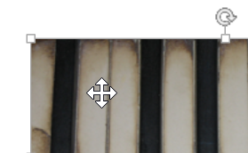 십자형 화살표