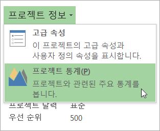 프로젝트 정보 옵션