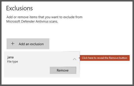 선택된 제외를 보여 주며 제거 단추가 표시되어 있는 Windows 보안의 제외 페이지입니다.