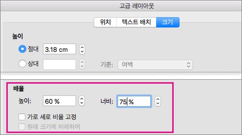 고급 레이아웃 상자의 크기 탭에서 강조 표시된 배율 옵션
