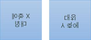 미러된 텍스트 예: 첫 번째는 x축에서 180도 회전, 두 번째는 y축에서 180도 회전