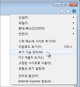 추가 기능 관리 메뉴 옵션
