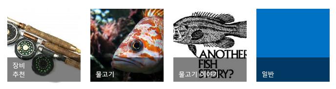 각각 낚시 이미지와 제목이 있는 네 가지 범주 타일
