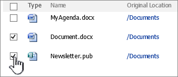 SharePoint 2007 휴지통 항목 선택 된 대화 상자