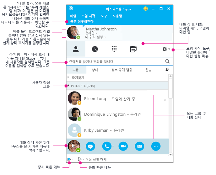 비즈니스용 Skype 연락처 창, 도식