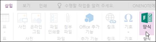 웹용 OneNote의 양식 삽입 옵션