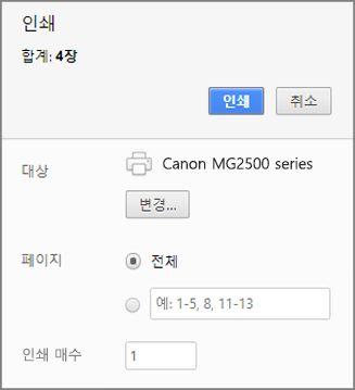 Chrome 인쇄 패널 옵션